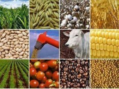 """Bayer altera relações com mercado e cria """"Rede AgroServices"""""""