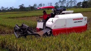 Photo of Daftar Harga Spare Part Combine Harvester Yanmar AW 70/82