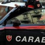Tartarughe a rischio estinzione in area adiacente officina abusiva. 57enne denunciato dai Carabinieri