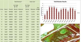 Data Management and Summarization