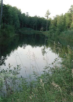 Zagađenje vodene sredine