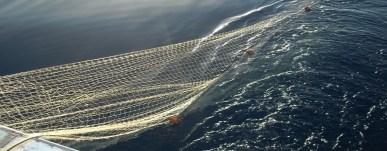 rete-da-pesca-illegale