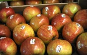 manzanas del sudtirol