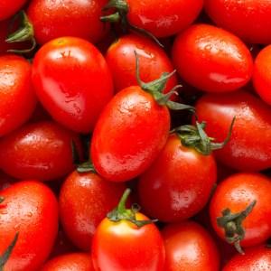tomates-MightyVine