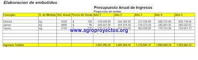 Ejemplo de proyección de ingresos anuales