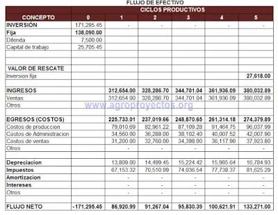 Plantilla en Excel del flujo de efectivo anualizado