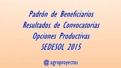 Resultados de convocatorias programas SEDESOL