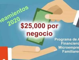 Apoyo financiero a micronegocios