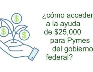 Creditos del gobierno para PYMES