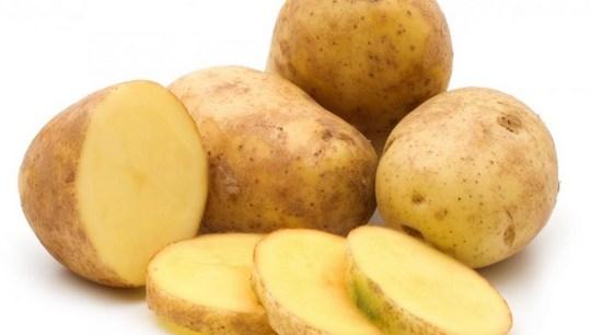 Cara memberantas Ulat penggulung daun pada tanaman kentang
