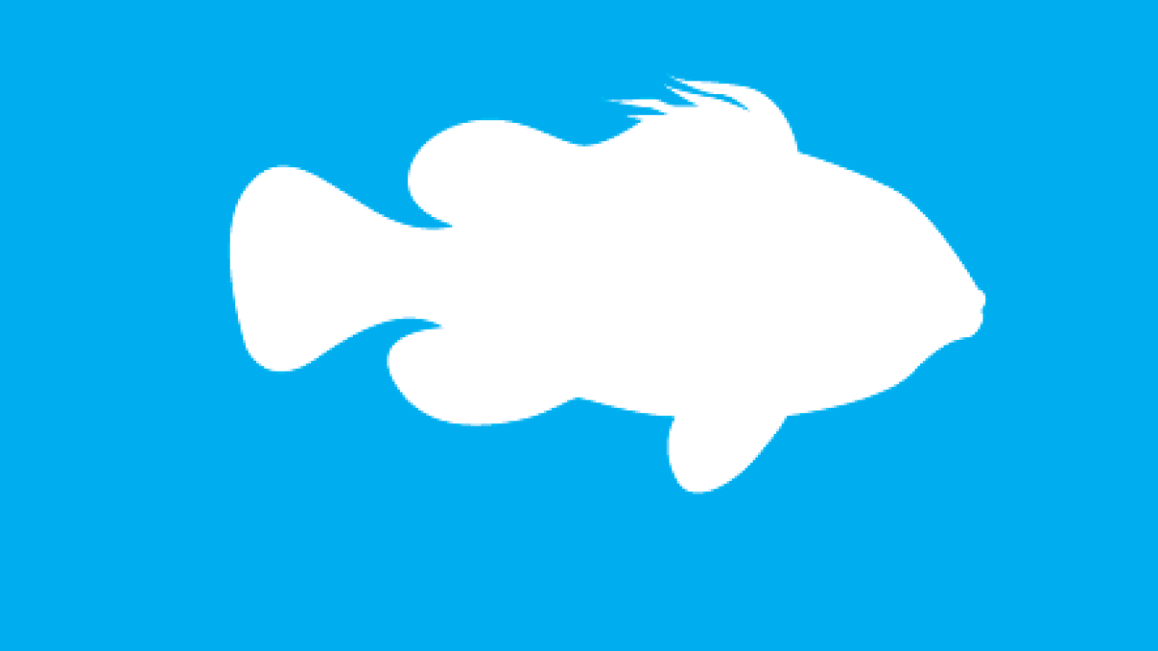 Prospek Budidaya Ikan Laut