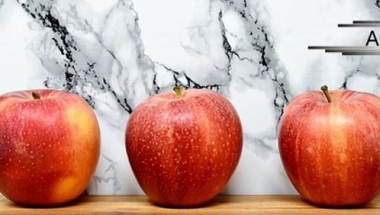 Bisnis tanaman buah yang menguntungkan dan cepat panen