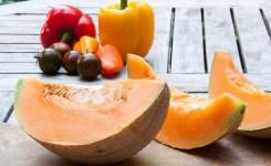cara agar tanaman melon berbuah manis