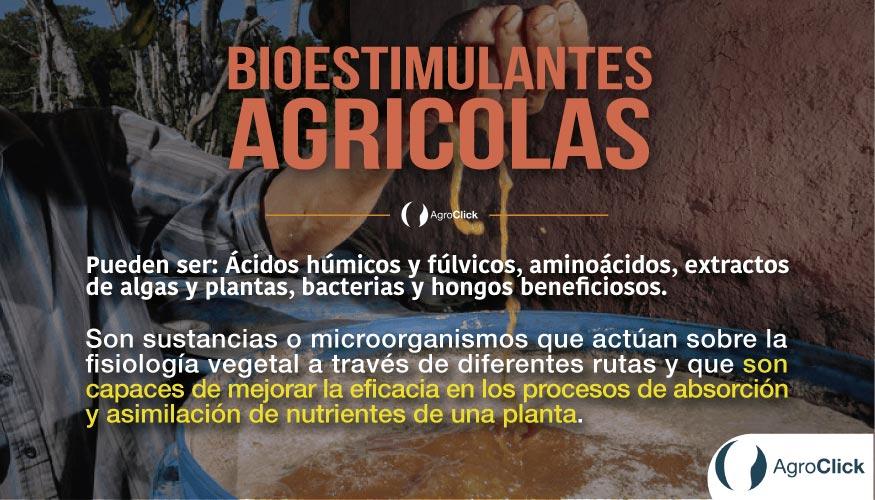 Bioestimulantes-Agrícolas