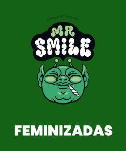 Mr. Smile FEM