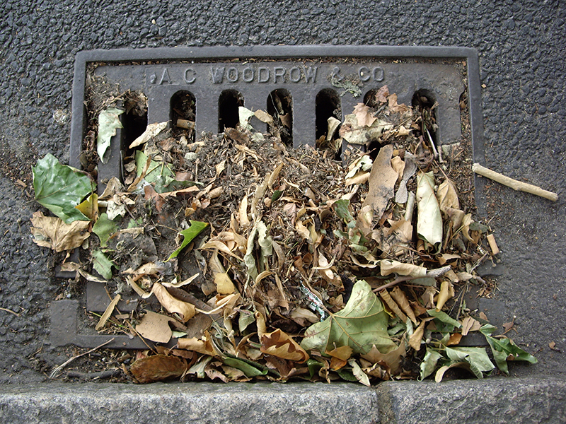 Drain Clearing Service in San Diego