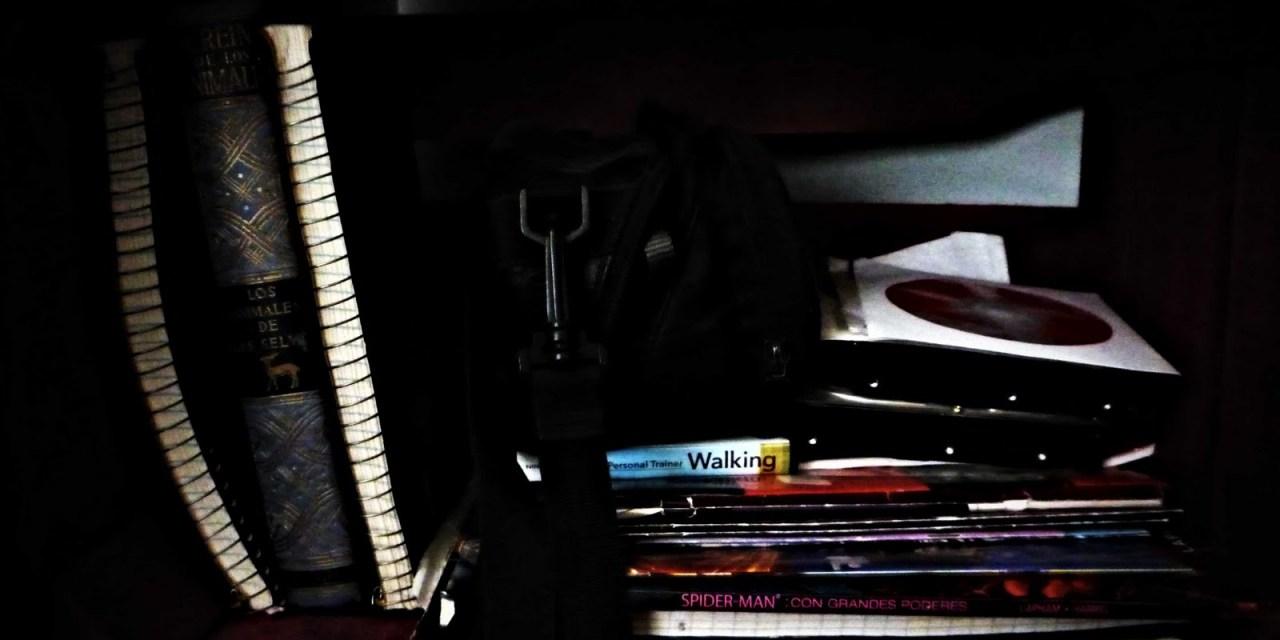Libreros (7)