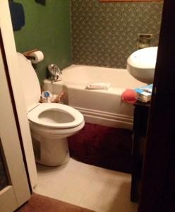 gorgeous wallpaper bath