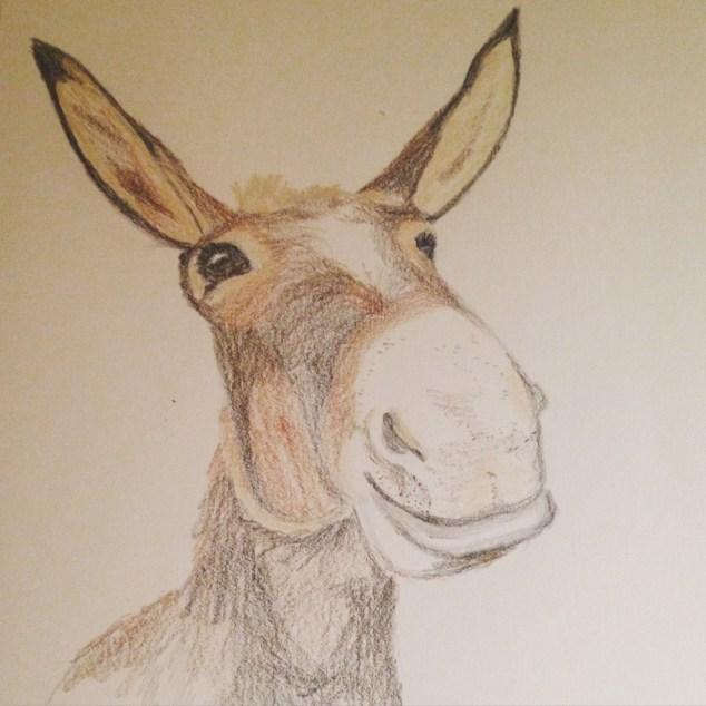 Jimmie's Donkey