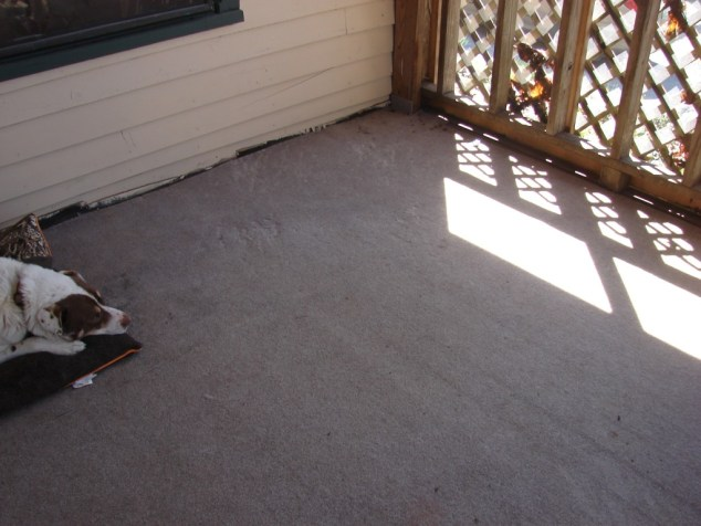 porch carpet