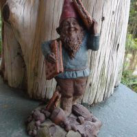 Are Gnomes Real? You Tell Me.