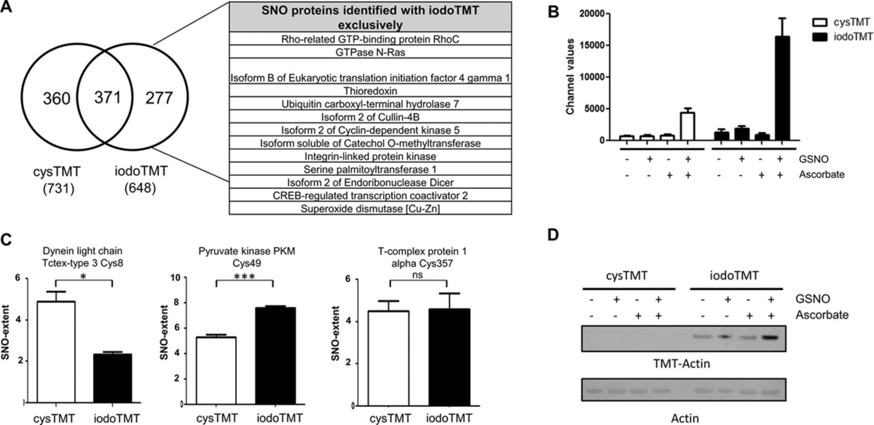 Dual Labeling Biotin Switch Assay To Reduce Bias Derived
