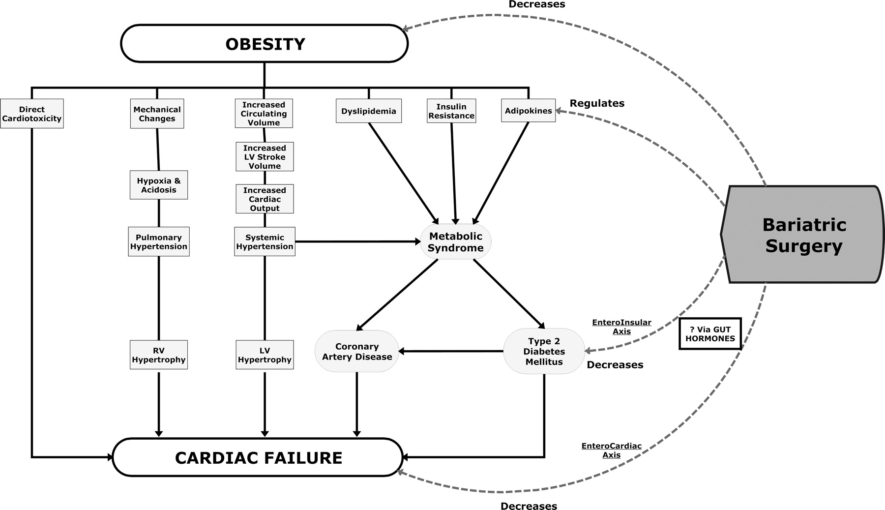 Effects Of Bariatric Surgery On Cardiovascular Function