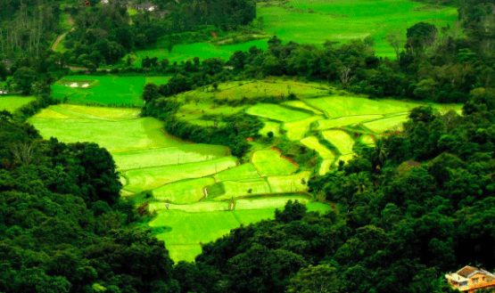 Best Sightseeing Places in Coorg | Popular Attractions of Coorg County