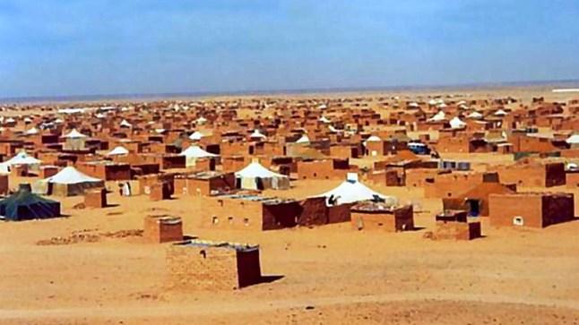موقع جزائري: المغرب يعرض تقديم 20 الف جرعة من اللقاح الى ساكنة مخيمات تندوف