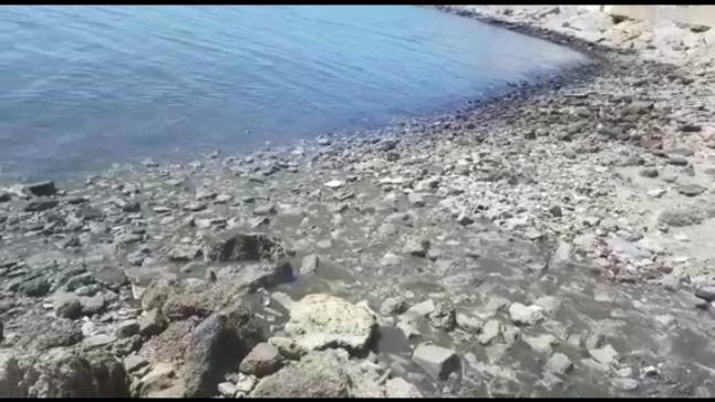 منظمات وهيئات المجتمع المدني بجهة الداخلة تناشد والي الجهة لحماية خليج الداخلة من مياه الصرف الصحي