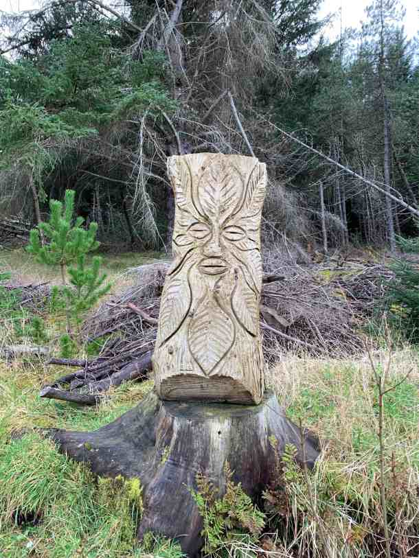 Forest Sculpture, Dunnet Forest