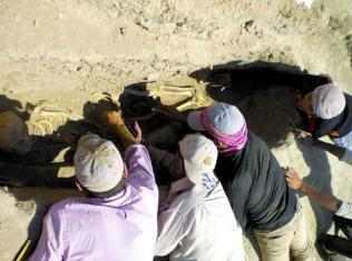 اكتشاف البلهارسيا في رفات إنسان عاش قبل 6200 عام في شمال سوريا