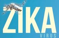 ما هو فايروس زيكا وما هي أعراضه وكيف يتم علاجه ؟