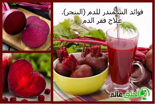 فوائد الشمندر للدم (البنجر) وعلاج حالات فقر الدم