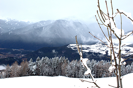 Winter11_low