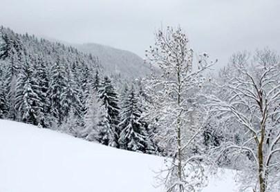 Winter5_low