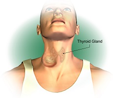 A lump in the front of the neck