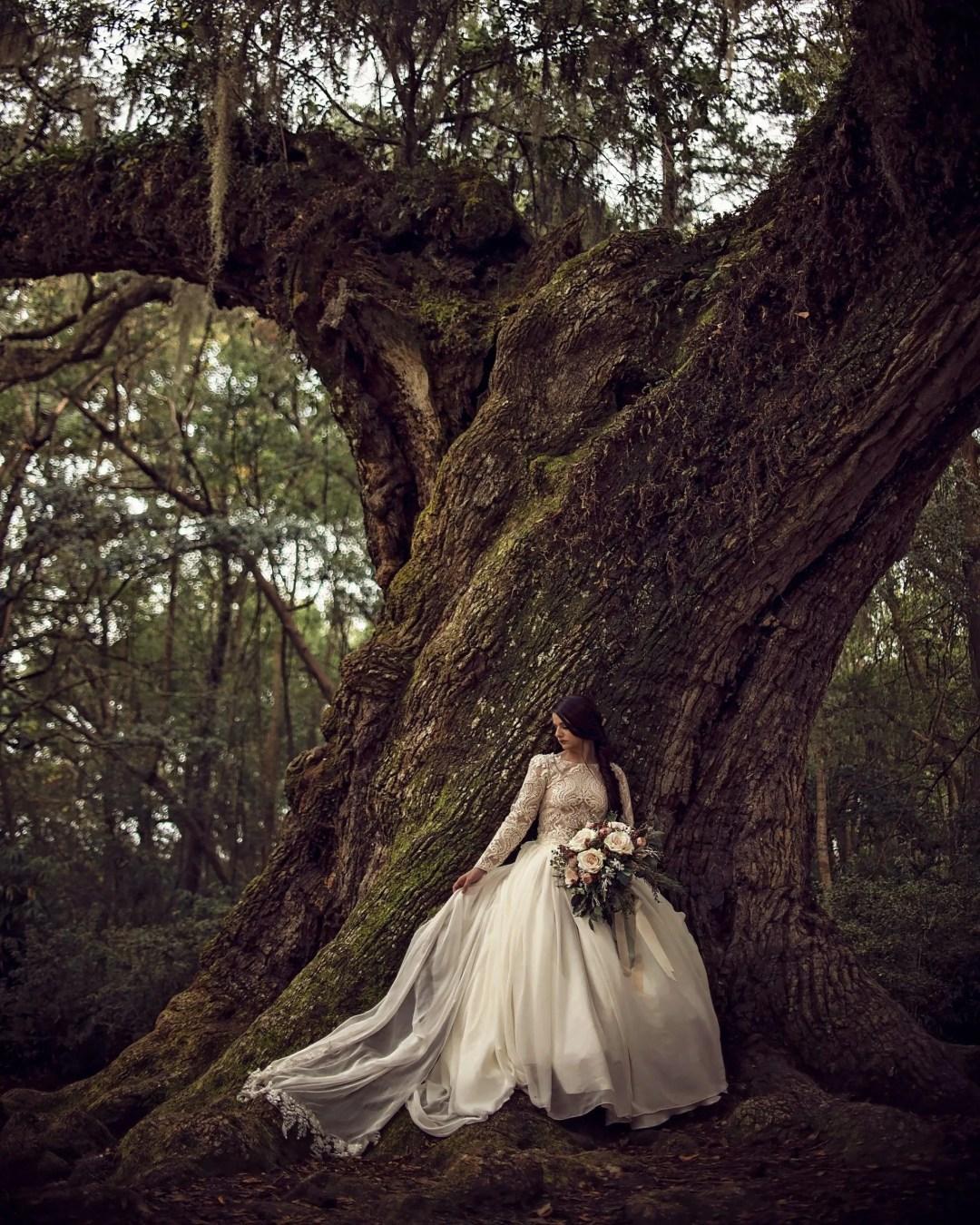 award winning bridal photography textured tree jungle gardens avery island