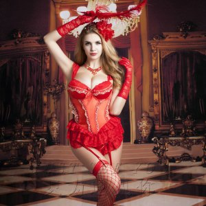 Aliexpress New Red Corset Court Lace Lingerie Female Abdominal Body Lingerie Gathering Sexy Corset