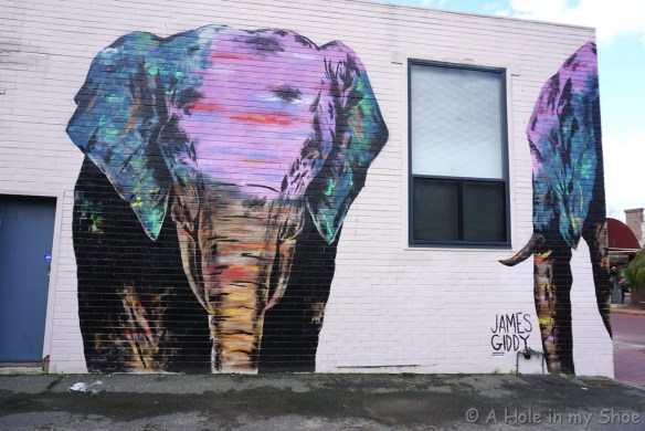 At the rear of the Good Store Vic Park you can see James Giddy's colourful elephants