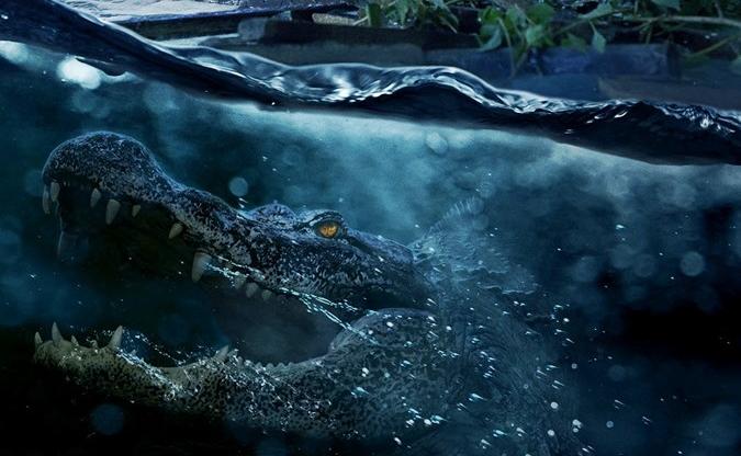 Família tenta sobreviver no trailer agoniante do filme 'Predadores Assassinos'