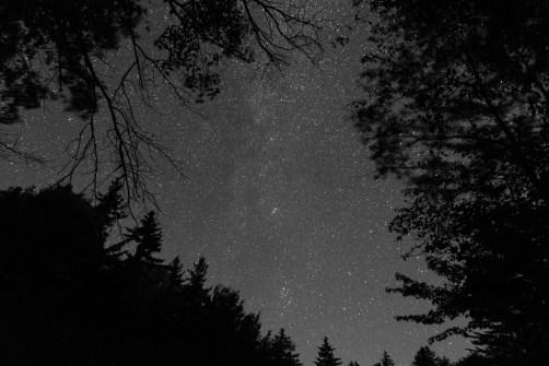 Brian Ventrudo - 4