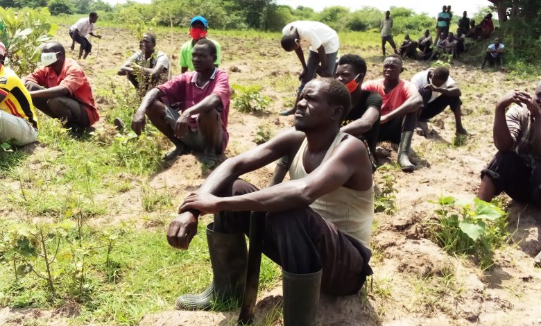 Photo of Katakwi District Gives Last Season Ultimatum to Wetland Encroachers