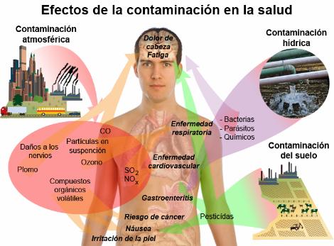 Infografía: Efectos de la contaminación, incluida la atmosférica, en la salud humana. Fuente: Mikael Häggström/Wikimedia Commons