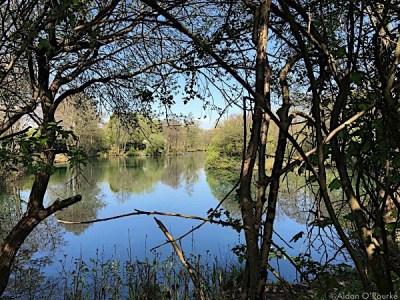 Fishing lake, Davenport, Stockport