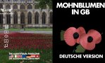 Mohnblumen in GB - Deutsche Version