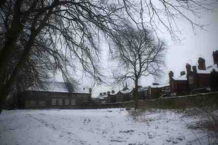 Snowy, Alexandra Park, Edgeley Library and houses in midwinter