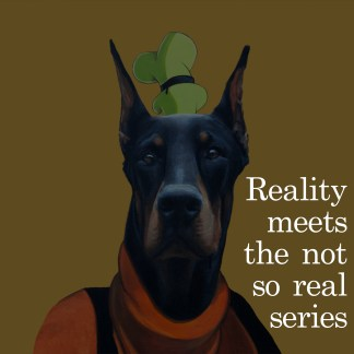 Reality Meets the Not so Real Series