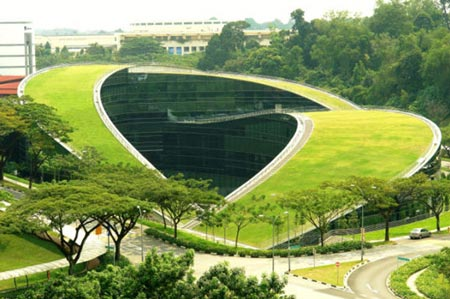 Green Roof of Art School in Singapore