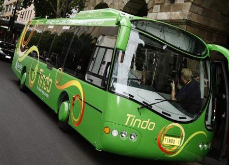 Tindo Bus